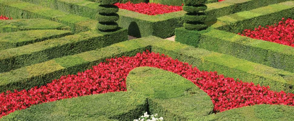 Vườn Pháp