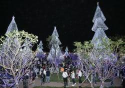 khai truong can ho mau dream home palace_010